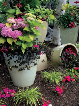Valley Nursery