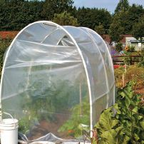 A hoop house gives peppers and tomatoes a faster start and some extra heat at the Blueberry Park P-Patch in Bremerton.