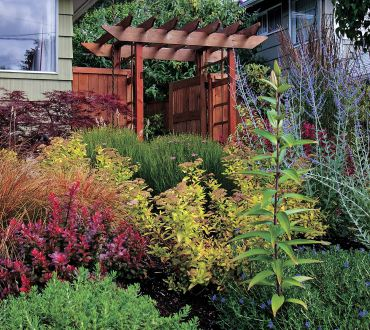 A striking combination of plant textures and colors is enhanced by the richly hued cedar arbor leading to the side yard. (Photo courtesy Colleen Miko)