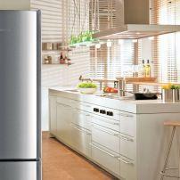 Liebherr's CS 1360 stainless steel 24-inch free-standing refrigerator