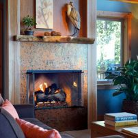 The fireplace can burn both gas and wood.