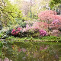 Northwest Gardens