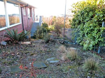 Before: Native garden down the side of a home. Dilemma? Feels messy the path is hard to walk on.
