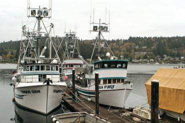 Gig Harbor's Net Sheds Harken Back to Yesteryear