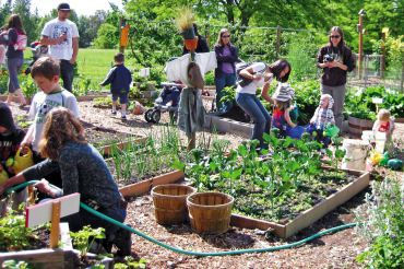 The New Victory Gardens