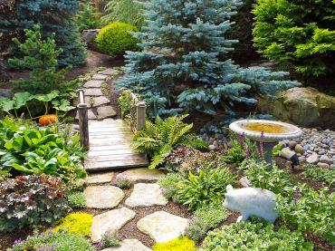 Conifer path in the Hegnes' garden
