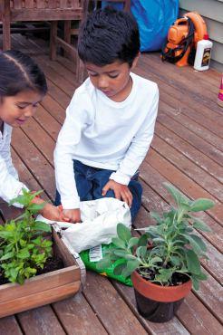 Kids' Gardening