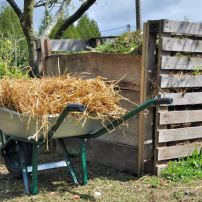 How to Turn Your Yard Waste into Resources
