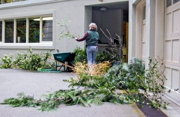 Volunteer Deb Damron organizes cuttings from a wide variety of choice trees and shrubs on an early spring Tuesday.
