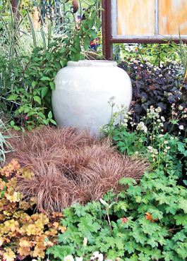 White pottery nestled into plantings creates a luminous reflection against the shadows of the plant foliage.