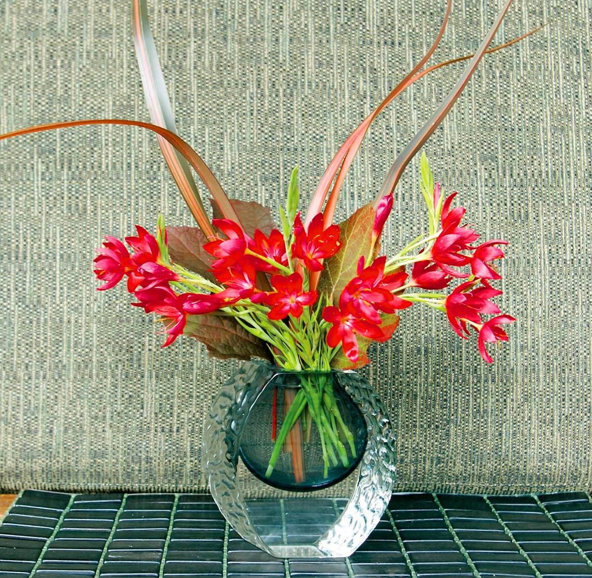 Wshg Flower Power Featured The Garden August 13 2014