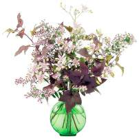'Lady in Black' calico aster, Tricyrtis and 'Diabolo' ninebark in green jar