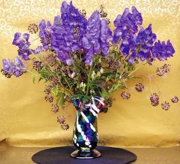 'Sparks Variety' monkshood and black berries of Aralia californica in blown glass vase