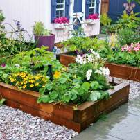 Raised planters the size of twin beds are fun personalized spaces for garden experimentation.
