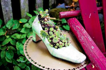 A shoe is for fun planting.