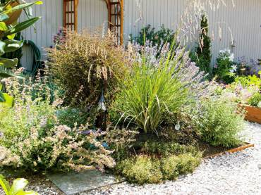 A butterfly garden featuring lavender, catmint, aster and angel's fishing rod (Dierama).