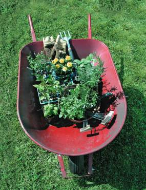 Get The Dirt — Wheelbarrow