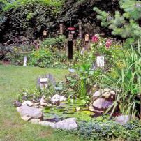 Healthy Birds In Your Backyard