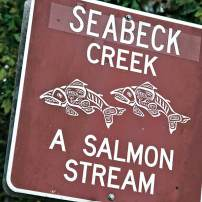 Day Trip To Seabeck