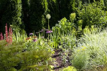Barbara and Dave Shoaf — Garden Paradise