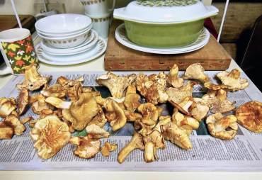Wild Game Meatloaf in Vintage Casserole Dish