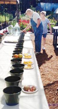 Tomatoes Sample Table