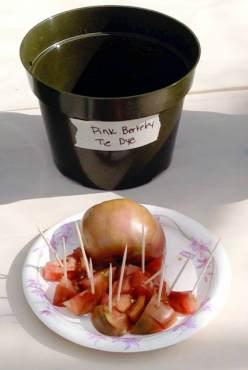 Pink Berkeley Tie Dye Tomatoes