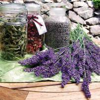 Jars of herbs lavender