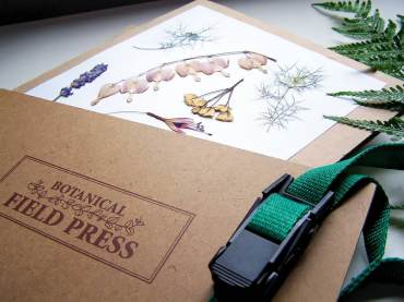 Plant material pressed in a flower press