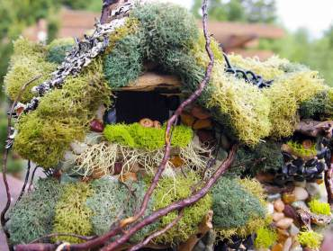 A colorful variety of moss and lichen adorn this birdhouse. (Photo by Colleen Miko)