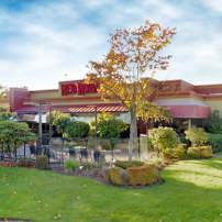 Red Robin in Silverdale