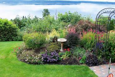 Renovating a Collector's Garden