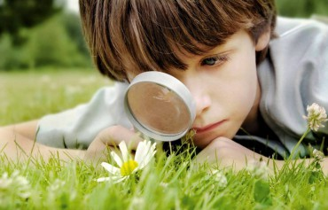 Outdoor Activities to Connect Children With Nature
