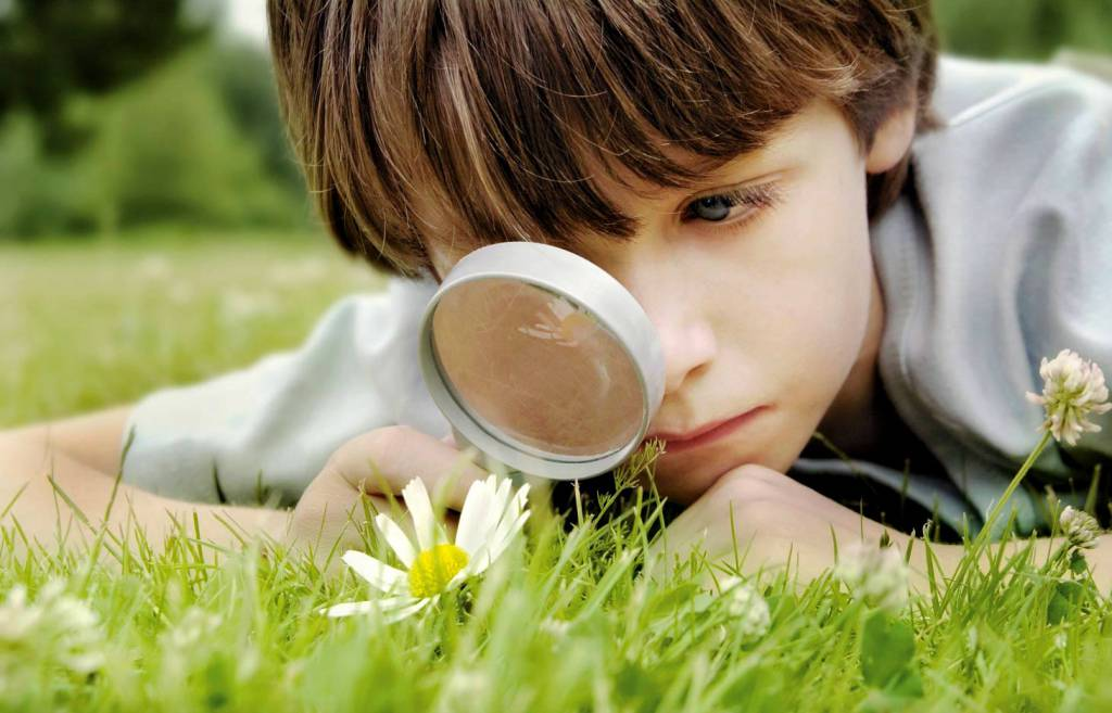 Backyard Garden Difference : Wshg outdoor activities to connect children with