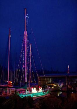 Kingston Christmas Lights