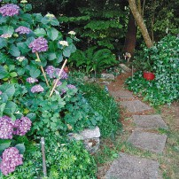 Orchard House — An English Cottage Garden