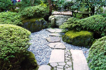 The Beauty and Effect of Gravel in the Garden