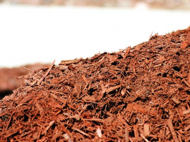 Bark is the perfect mulch for acid-loving plants.