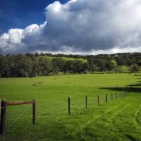 Small Farms Kitsap