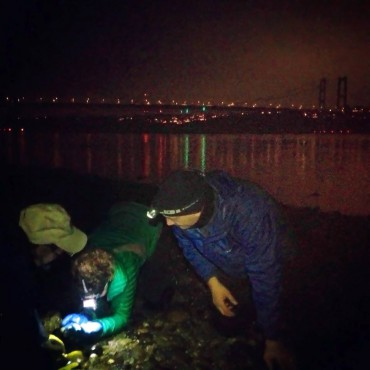 Taking a closer look at the beach with the Narrows Bridge in the background.