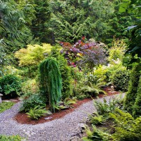 Margie and Jerry Breunig — Dedicated Gardeners