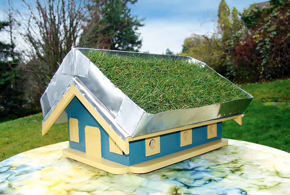 Wshg Net How To Build A Green Roof Birdhouse Featured