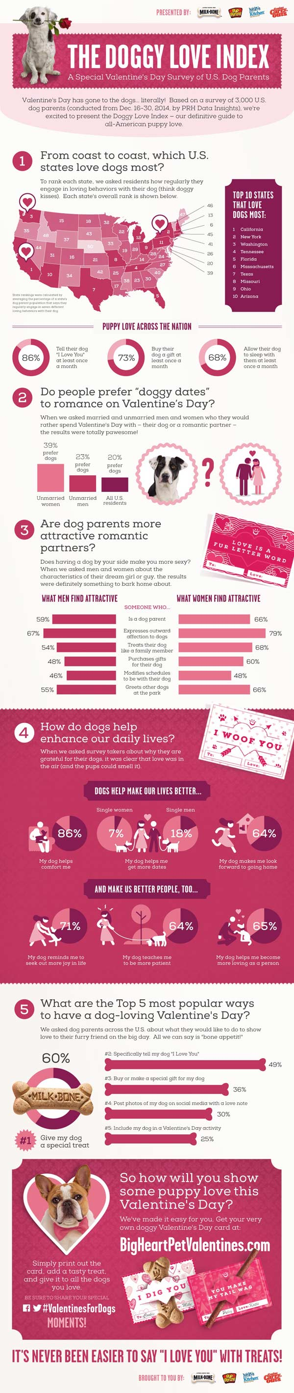 Doggy Love Infographic