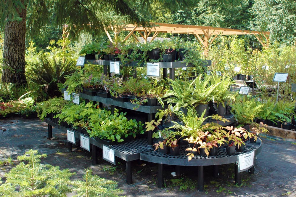 Woodbrook Native Plant Nursery