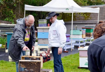 Ted Gill (left) David Mackovjak opening a package of bees. Gill is the president of West Sound Beekeepers Association.