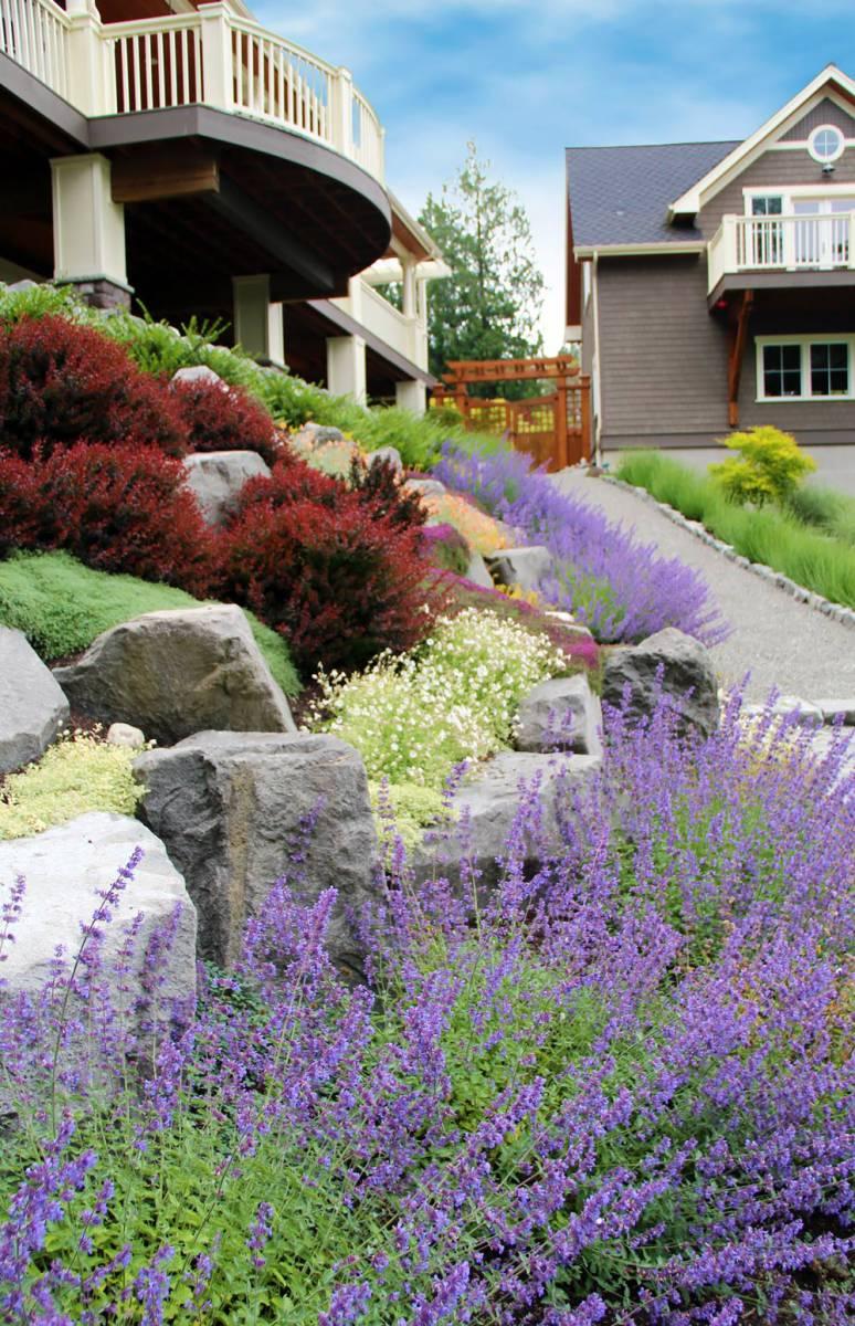 (Photo Courtesy Bliss Garden Design)