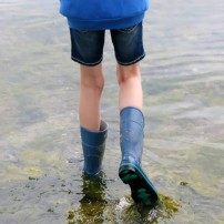 Wear your boots or flip-flops and get your feet wet!