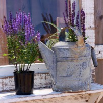 Repurposing Containers