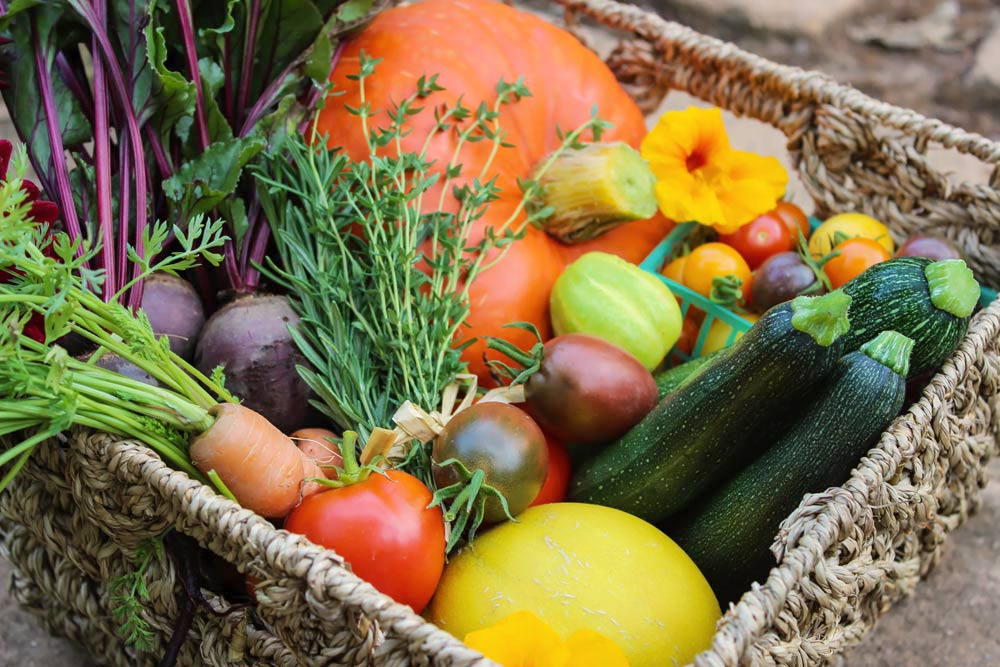 preservation of fruits and vegetables pdf