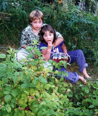 The author's kids enjoying raspberries after harvesting them — kids love taking ownership and enjoying the fruits of their own labor!